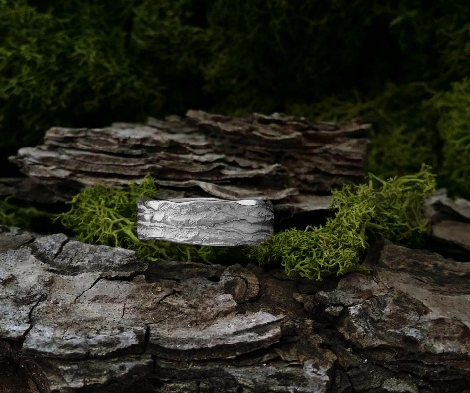 Anillo de madera de pino la huella del bosque - Maderas del pino ...