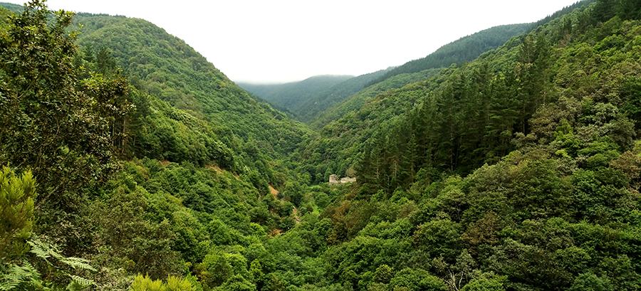 Los imprescindibles para una excursión en la Naturaleza I