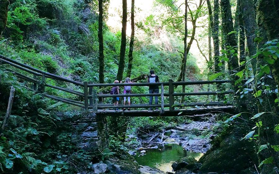 Mis imprescindibles para una excursión en la Naturaleza II